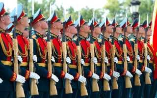 Что такое полк и сколько в нём состоит человек?