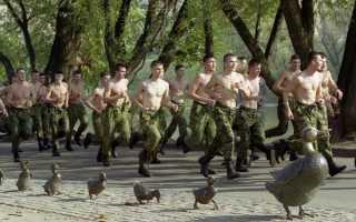 Особенности распорядка дня в армии